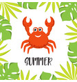 summer red crab vector image vector image