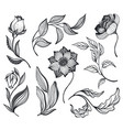 collection with hand drawn doodle flowers vector image vector image