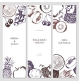 fruit banners - hand drawn design vector image vector image