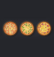 realistic pizza tasty italian food with cheese vector image