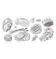 steak vintage sketch with beef and pork chops vector image vector image