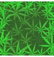 Green Cannabis Leaves Background vector image vector image