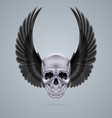 Metal chrome skull with two wings up vector image vector image