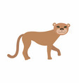 puma cougar or mountain lion vector image vector image