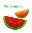 watermelon icon cute red watermelon slide vector image vector image