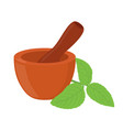 basil herb mortar pestle cartoon style vector image vector image