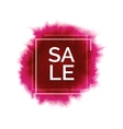 bright splash with world sale vector image vector image