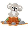 cartoon bakoala sitting on tree stump vector image vector image