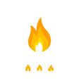 design of colorful flame icon vector image