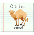 Flashcard letter C is for camel vector image vector image