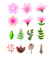 floral set colorful floral collection with leaves vector image