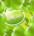 fresh apple background vector image vector image