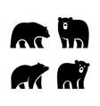 set bear logo vector image vector image