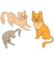 Three funny cartoon cats vector image