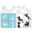 Black and white cats on the windows vector image
