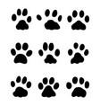 footprints of rabbits vector image vector image