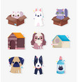 little dogs cats domestic cartoon animal vector image vector image