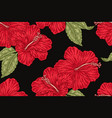 red hibiscus flowers on black background hand vector image vector image