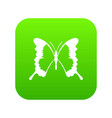 swallowtail butterfly icon digital green vector image