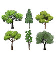 trees collection green plants with leaves ecology vector image vector image