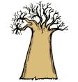 baobab vector image