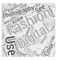 digital fashion photography Word Cloud Concept vector image vector image