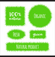 flat grass banner label vector image