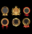 Golden badges vector image vector image