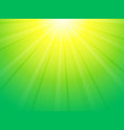 green yellow background with sun rays vector image vector image