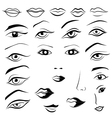 Human eyes lips eyebrows and noses vector image vector image