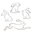 outline of rabbits and hares vector image vector image