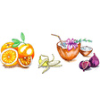 Summer fruits vector image vector image