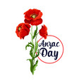 anzac day 25 april poppy bunch icon vector image