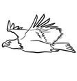 flying eagle vector image