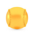 golden baseball award concept shiny realistic vector image
