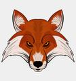 mascot fox head cartoon style vector image