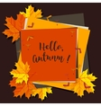 Autumn seasonal banner design Fall leaf vector image