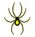 creative spider vector image
