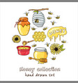 hand drawn set with honey elements bee vector image