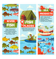 river fish and seafood products banners vector image
