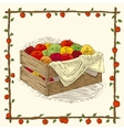 Wooden Box with Ripe Apples vector image