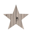 wooden star vector image