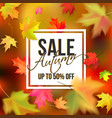 autumn typographic sale vector image