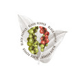 black pepper emblem over hand drawn pepper plant vector image vector image