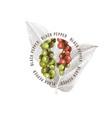 black pepper emblem over hand drawn pepper plant vector image