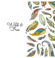 boho doodle colored feathers background vector image vector image