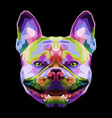 french bulldog on geometric pop art style vector image vector image