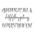 pen lettering alphabet vector image