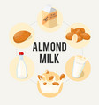 almond milk infographic ad poster healthy eating vector image