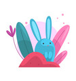 cute adorable bunny hiding and peeking out of vector image